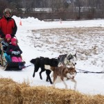 A family sledding during Rochester's 2014 Fire and Ice festival. Originally published on: http://oaklandcountyblog.com/2014/01/02/2014-fire-ice-festival/